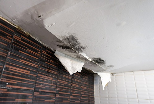 A ceiling suffering from water damage, soon to need water restoration